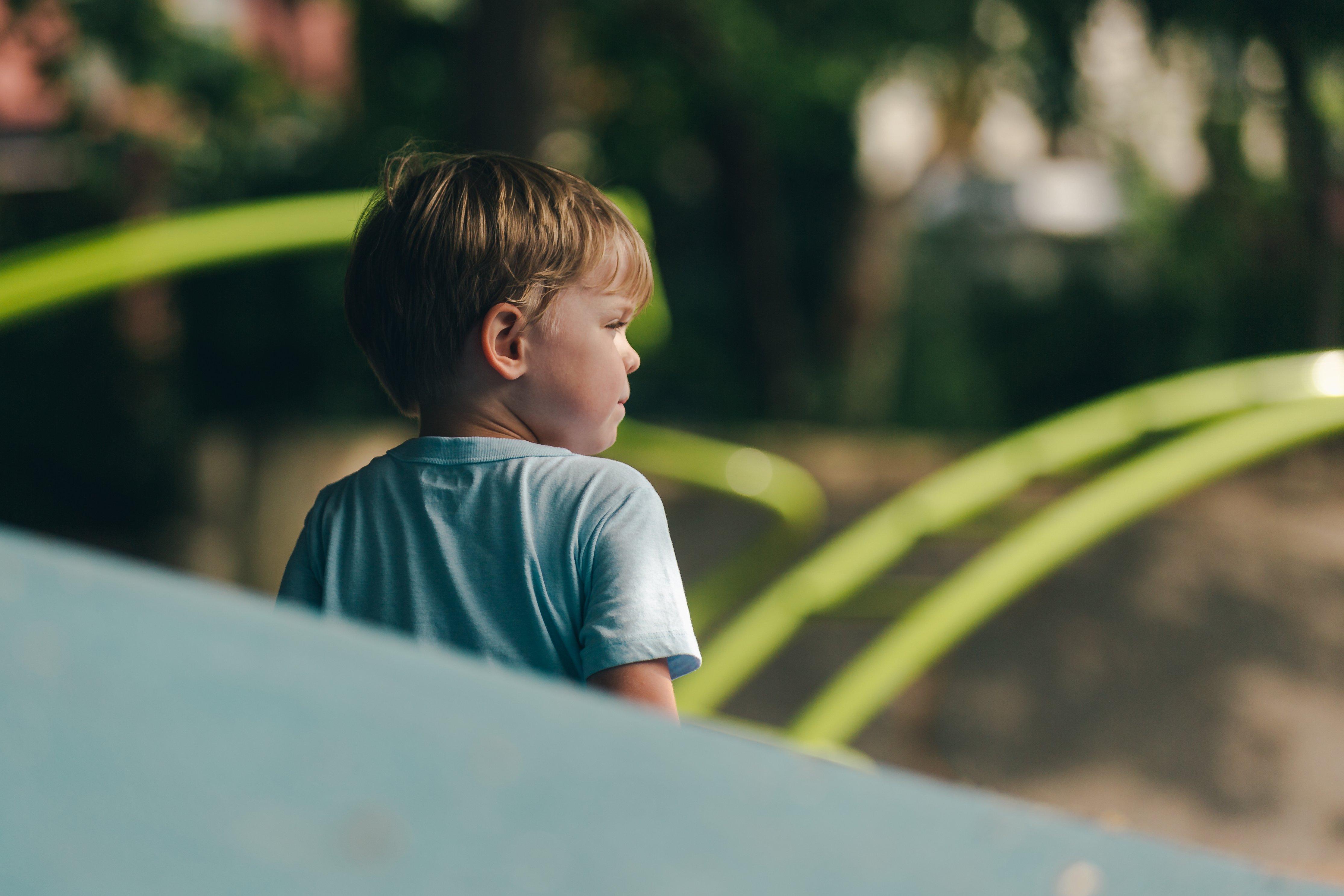 atividades de estimulação cognitiva 7 exemplos para a educação infantil